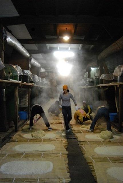 麹と蒸米の混ぜ合わせ作業