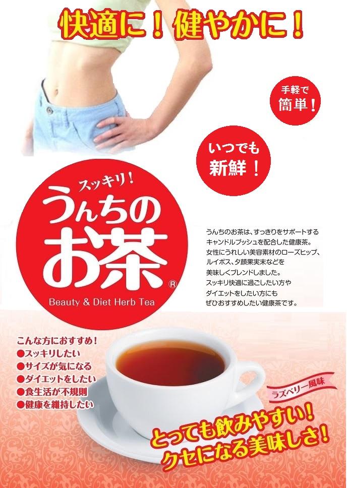 うんちのお茶パンフレット1