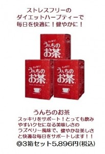 うんちのお茶3箱セット